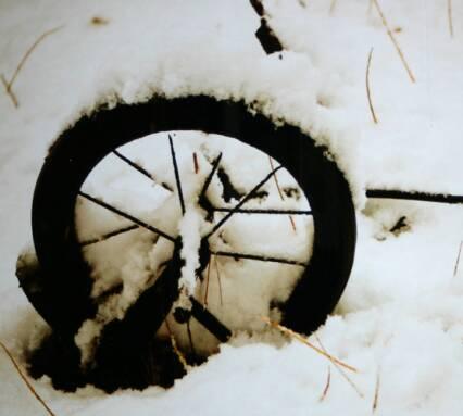 2012-AAJ-Winter-Show